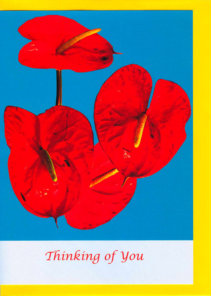 Anthurium Flower Card