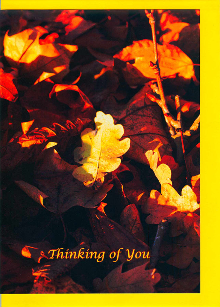 Autumn Leaves 2, Card