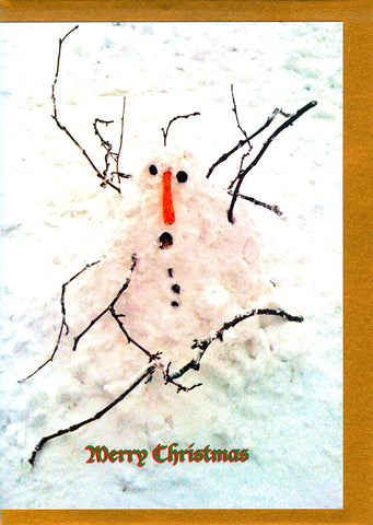 Snowman with a carrot nose