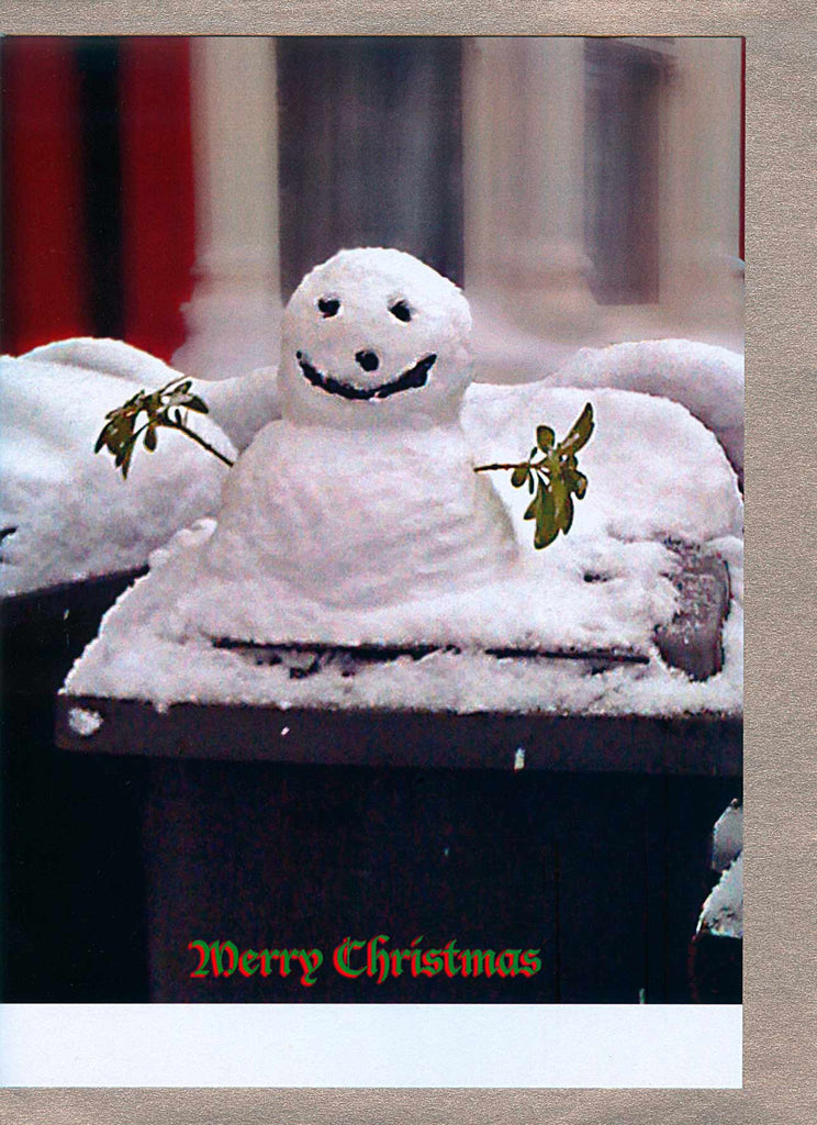 Snowman on Wheelie bin