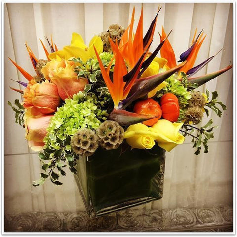 Paradise of Birds - NE Flower Boutique