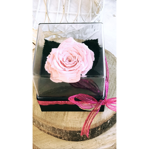 Pink Love Forever Rose - NE Flower Boutique