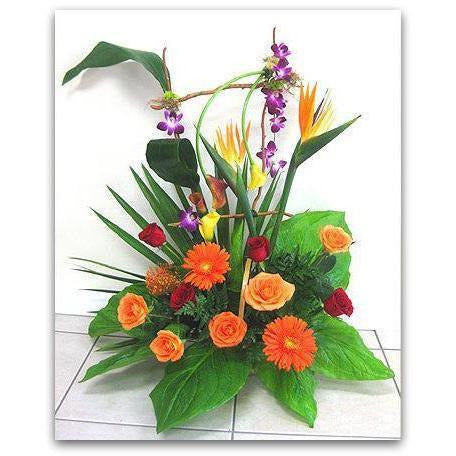 Orange Crush - NE Flower Boutique