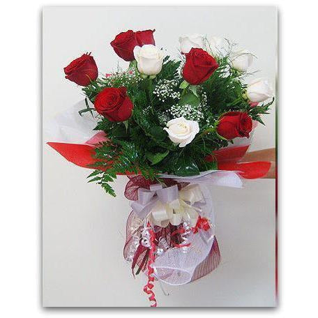 Red and White dozen - NE Flower Boutique