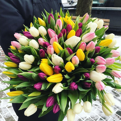 101 Tulips - NE Flower Boutique
