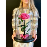Beauty and the Beast Roses in Glass Dome - NE Flower Boutique