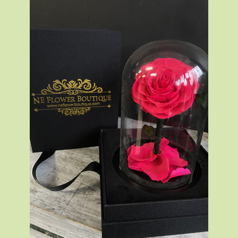 1 - Beauty and the Beast Roses in Glass Dome - NE Flower Boutique