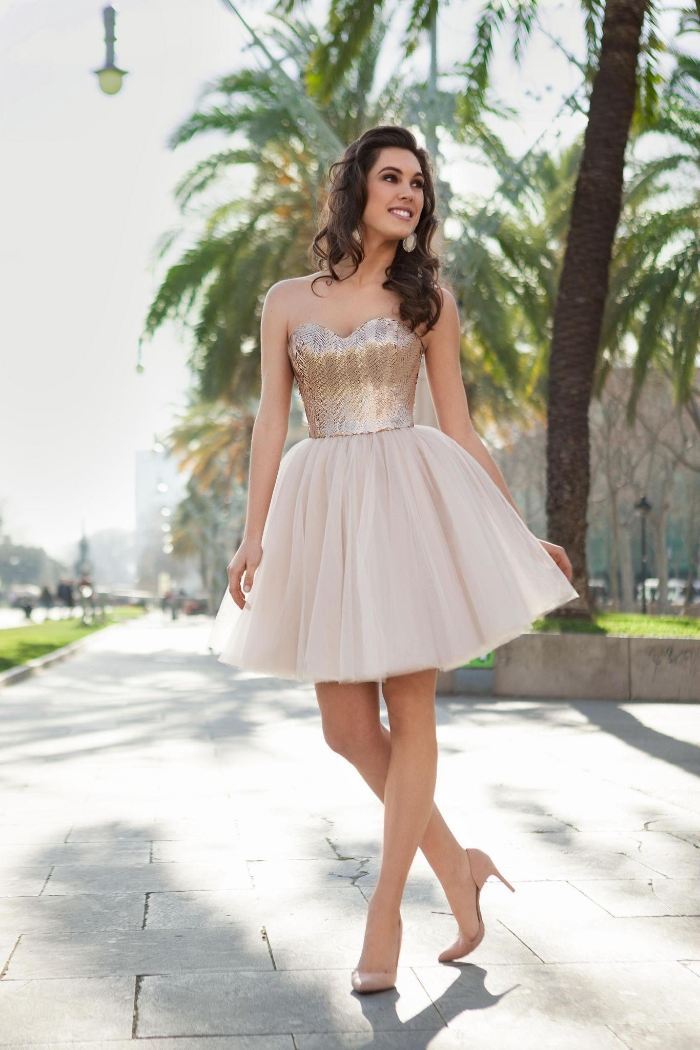 Sparkling Fit and Flare Mesh Skirt Dress