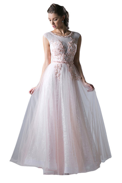 Blush Long A-line Evening Tulle Dress