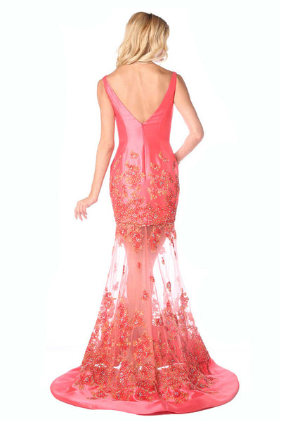 Long Coral Sheer Skirt Dress