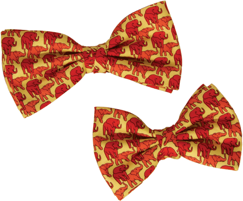 Matching Father & Son Bow Ties