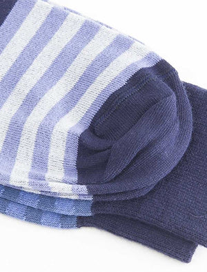 Blue Gradient Striped Organic Cotton Socks | 40 Colori