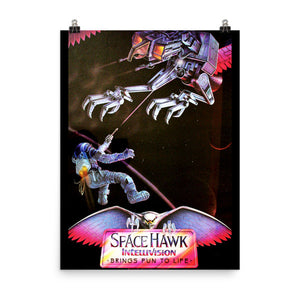 Space Hawk Original Artwork 18x24 Poster