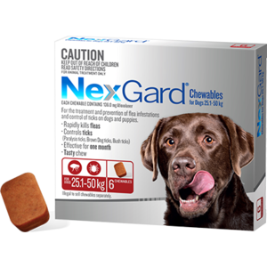 Nexgard Dog, Large