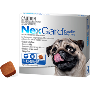 Nexgard Dog, Small