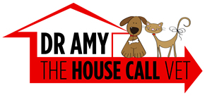 Dr Amy The House Call Vet