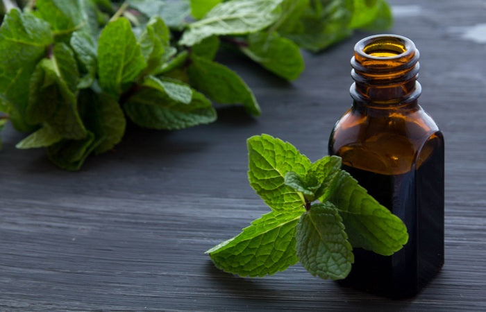 Essential Oils as Mosquito Repellant: This Season Keep the Bugs away Naturally