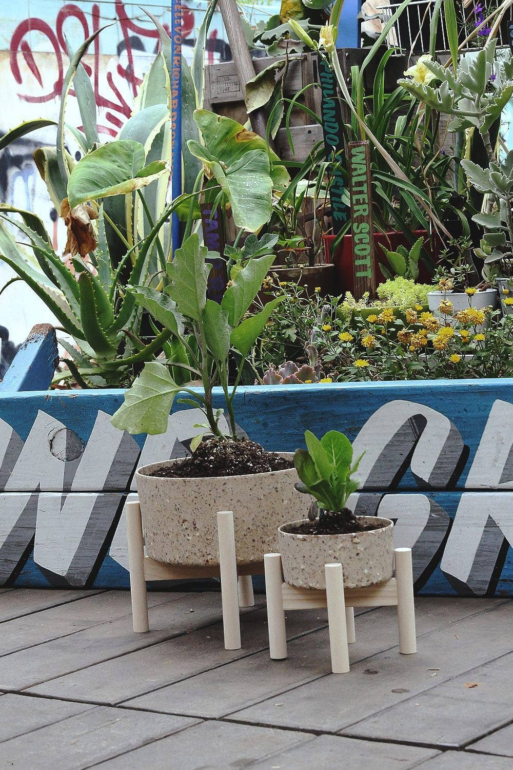 Wood Leg Planter - Coffee