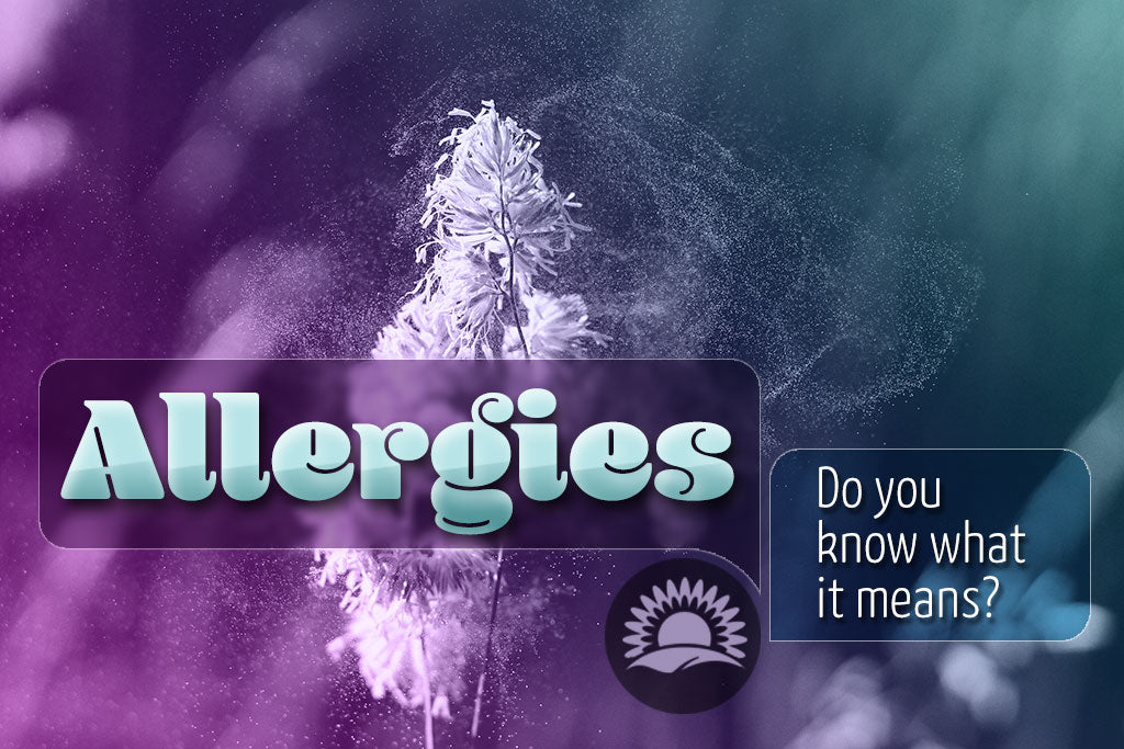 More Healthy #02: <br>Allergies On The Attack