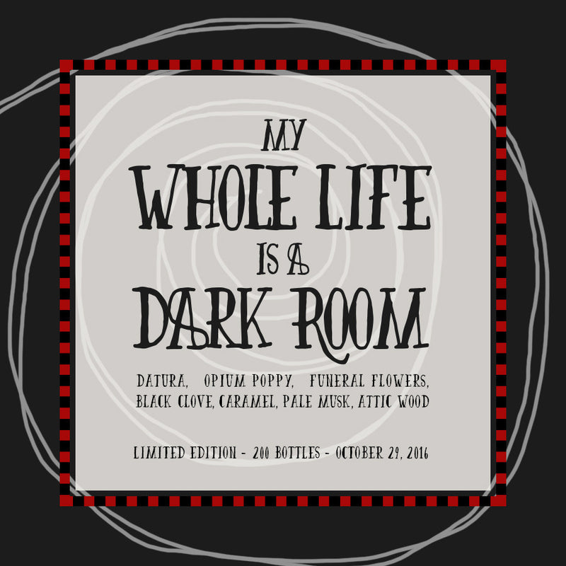 My Whole Life Is A Dark Room - RESURRECTION Pre-Order