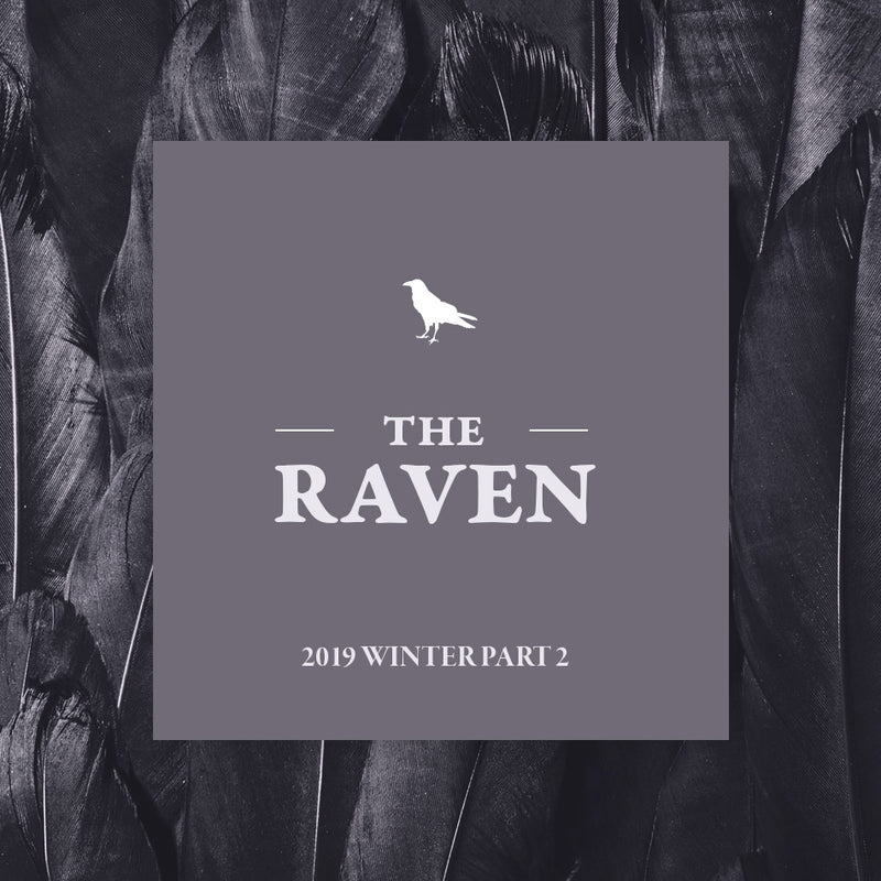 Winter Part 2 - The Raven