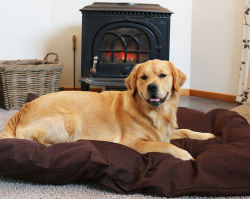 Pet Bed + Cover COMBO - Made in NZ