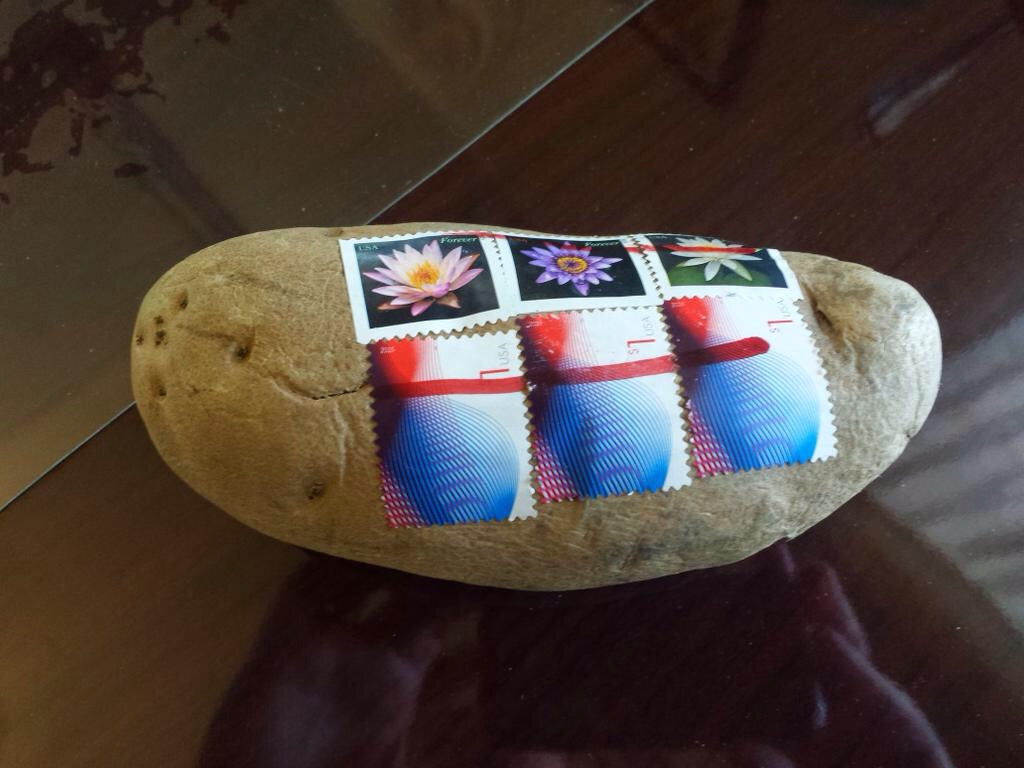 six potato