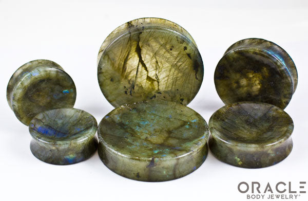 Labradorite Concave Solid Double Flare Plugs