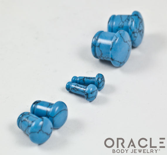 Synthetic Turquoise Single Flare Plugs