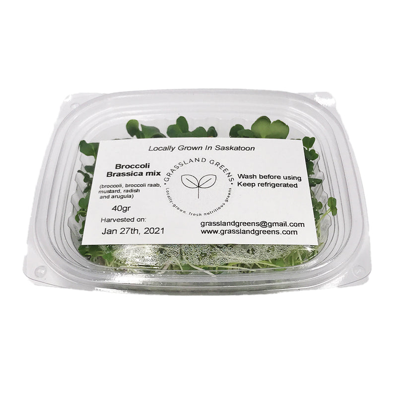 Grassland Greens- Broccoli Brassica Mix: (clamshell, 40g)