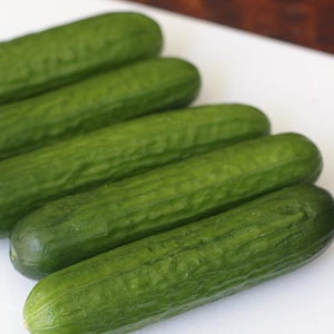 Grandora Gardens - Cucumbers: Mini Cucumber (minimum 4 per bag)