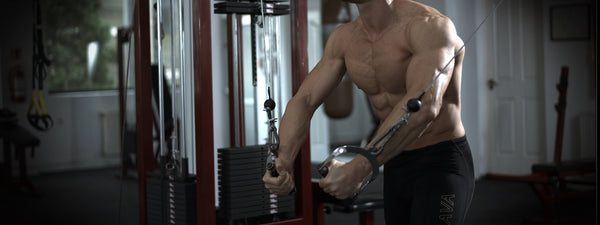 5 EXERCISES TO GROW YOUR SHOULDER MUSCLES