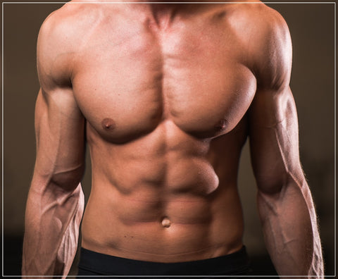 HOW TO BUILD AND MAINTAIN LEAN MUSCLE MASS - Mavasports