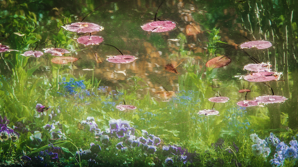 LT (227) - MONET'S GARDEN   1/50 - unframed