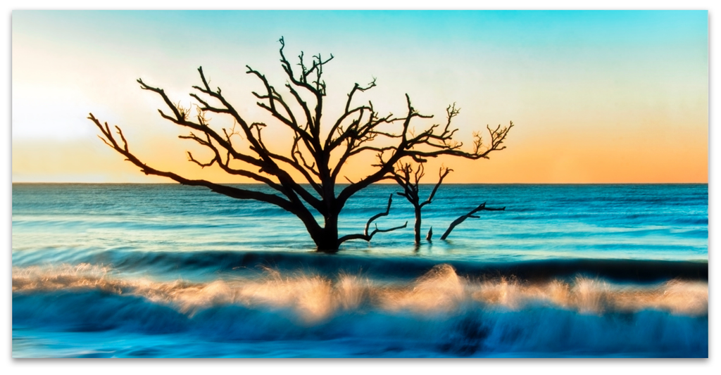 LT (251) TREE IN THE SEA - 2/9