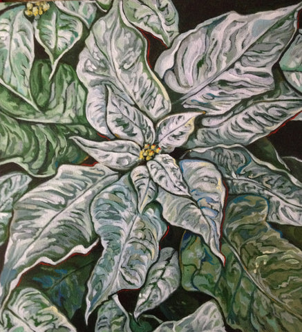 EA - WHITE POINSETTIA