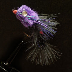 Wilma's Weakness - Midnight Oil 2 Pack