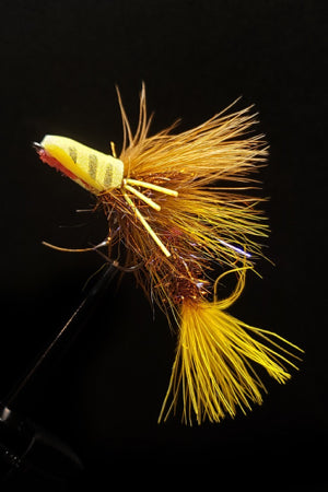 Stripper's Delight - Wy-Yellow 3 Pack