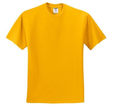 Gold Gym T-Shirt w/ Logo (Unisex All Grades) - Kids Palace