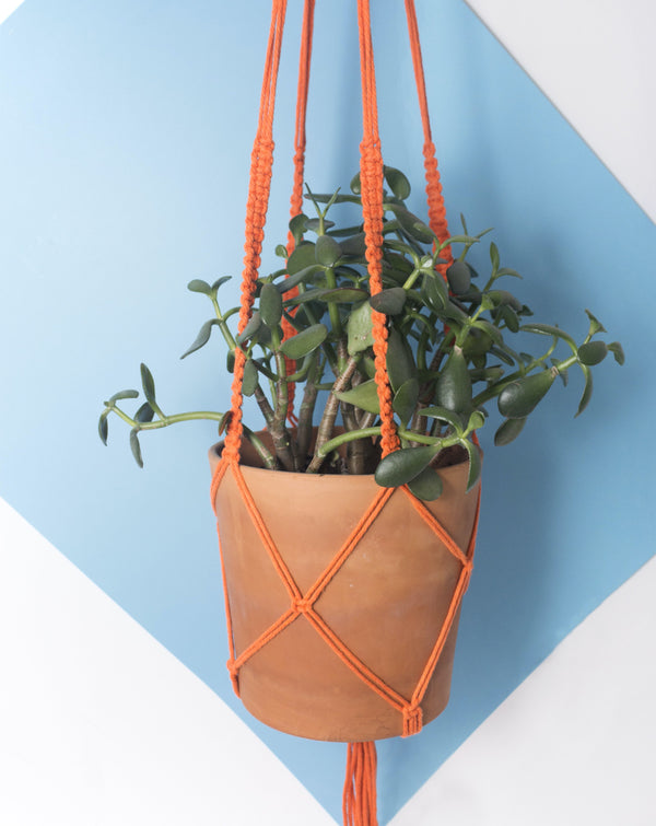 Knitgrid - Large Macrame Planter