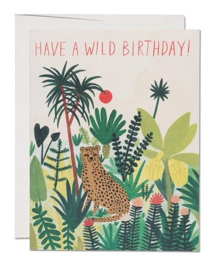 Red Cap Cards - Cheetah Birthday Card