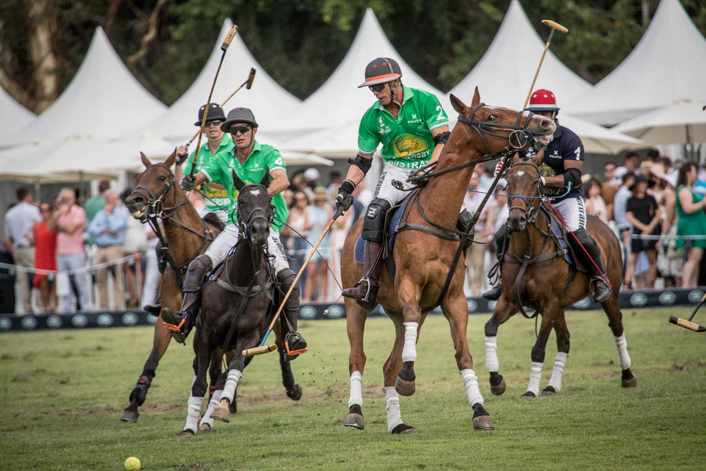haiti vs australia polo in the city