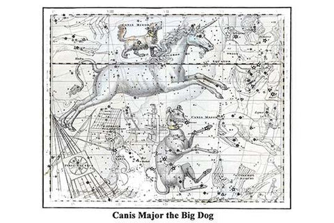 Canis Major the Big Dog