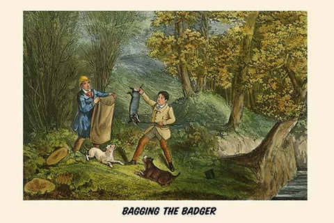 Bagging the Badger