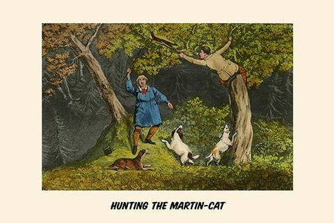 Hunting the Martin Cat