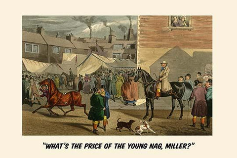 What's the Price of the Young Nag, Miller?