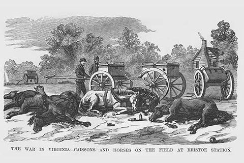 Caissons & Horses on the Field at Bristoe Station