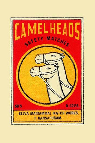 Camel Heads