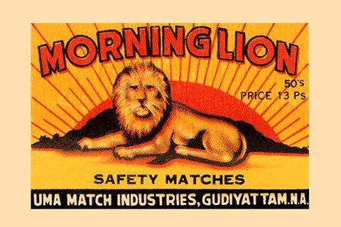 Morning Lion