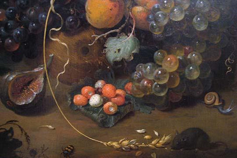 Still Life Detail of Fruit and Snail